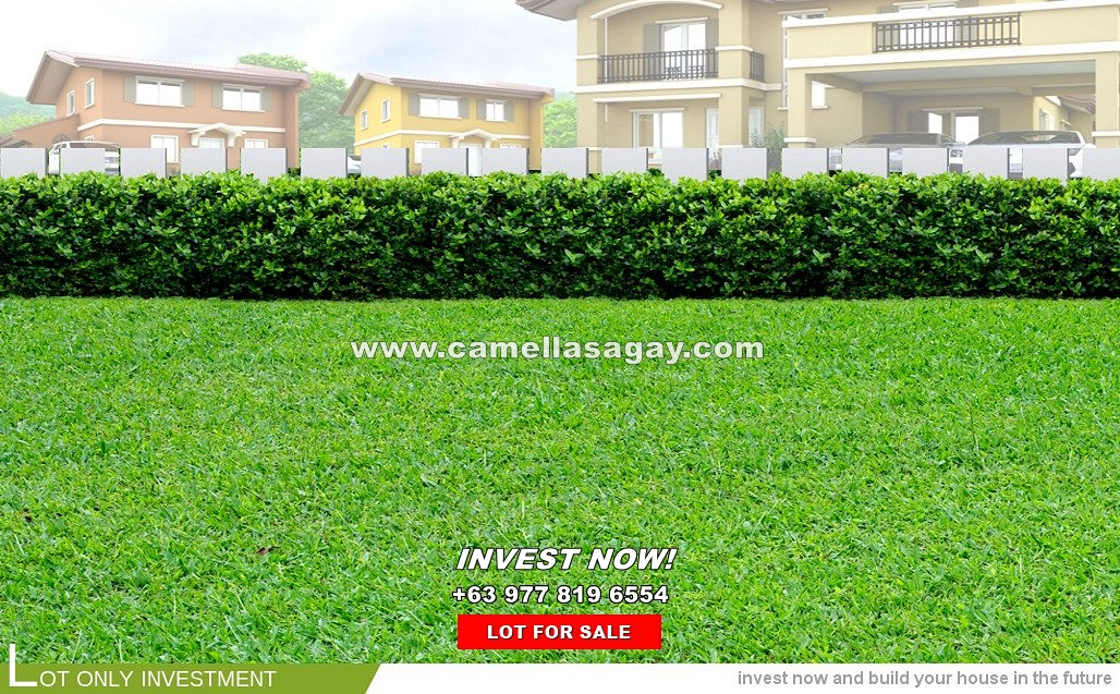 Lot House for Sale in Sagay