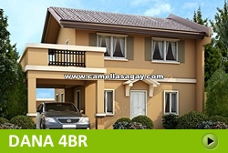 Dana House and Lot for Sale in Sagay Philippines